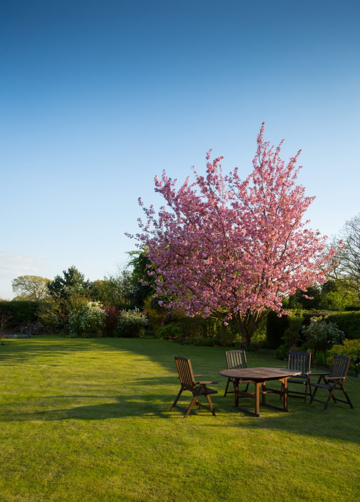 huis tuin vakantie